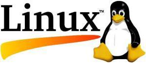 Administradores de Sistemas estudiaron las Redes en Software Libre GNU/LINUX