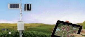 Nubes virtuales pueden garantizar el control de plagas en viñedos