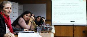 Directorio de Responsabilidad Social aprobó proyecto de formación en animación